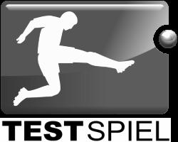 Testspiel silber