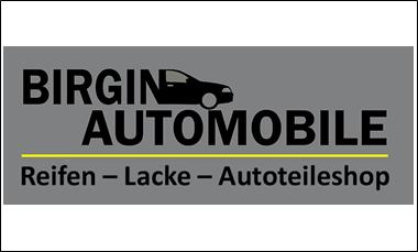 Logo Birgin_neu